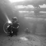 Dive Superior Producer, Curacao