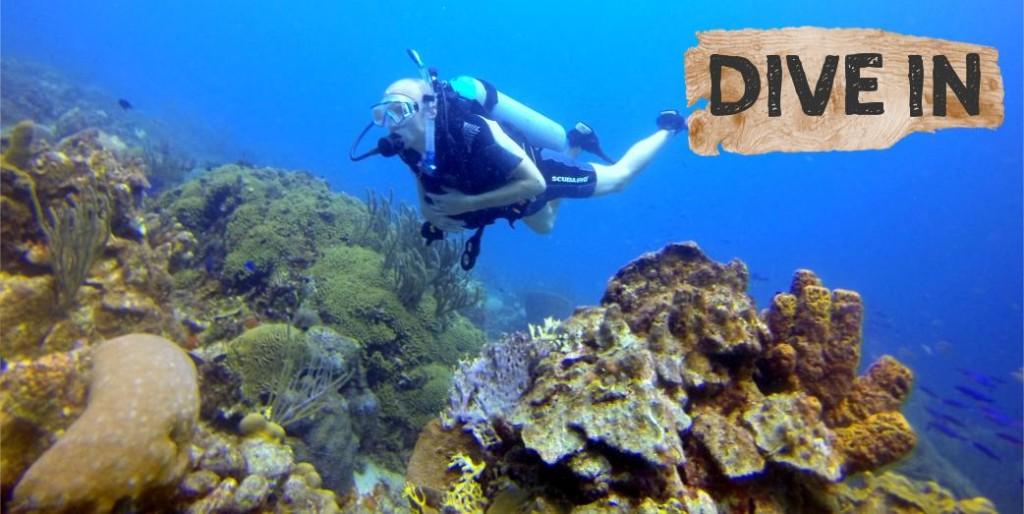 The Dive Bus Curaçao PADI Scuba Diver - The Dive Bus Curaçao
