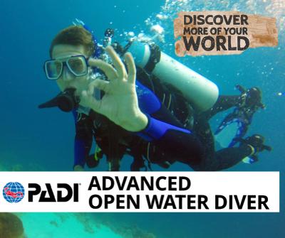 Padi open water diver manual