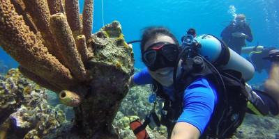 Happy Mark, Dive Bus Curacao