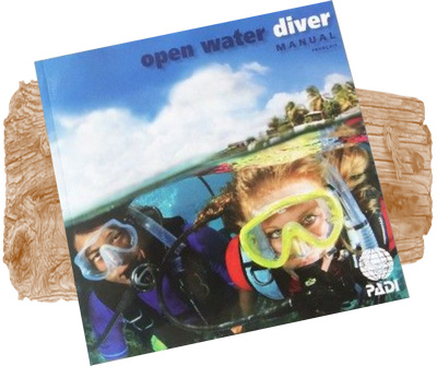 the dive bus cura ao padi open water diver course the dive bus cura ao rh thedivebus com padi divers manual pdf padi diving manual free
