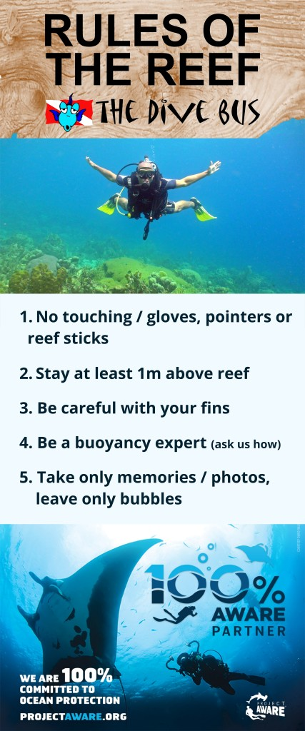3-rules-of-the-reef-final-50-x-120cm