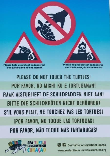 Curacao Sea Turtle Conservation