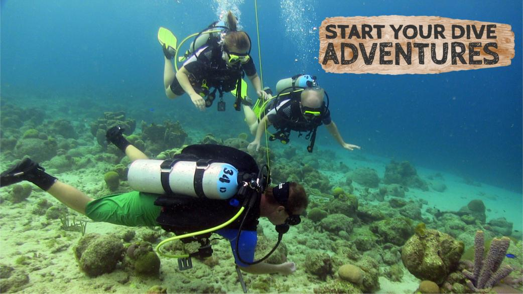 Discover Scuba diving header photo