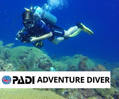 PADI Adventure Diver course, The Dive Bus Curacao
