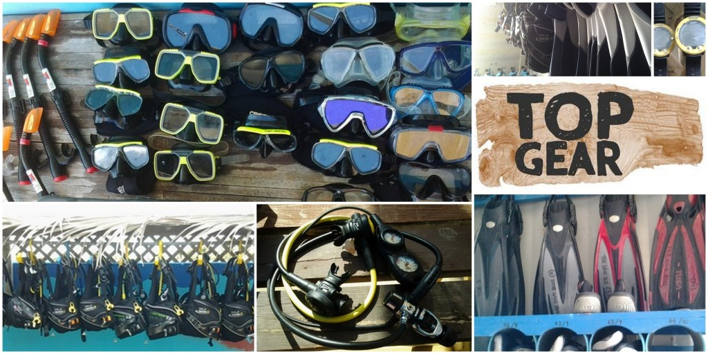 Rental Dive Equipment