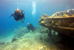 the dive bus, curacao, PADI, 100% project aware,